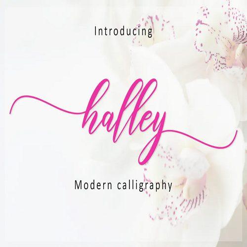 Halley Script