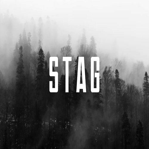STAG Modern Display Headline Logo Typeface
