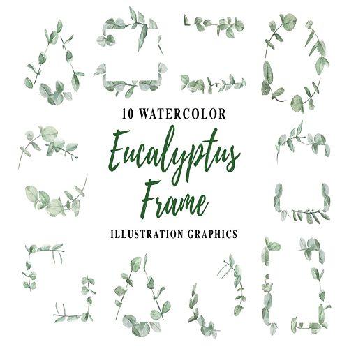 10 Watercolor Eucalyptus Frame Illustration