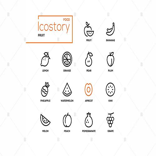 Fruit modern line design style icons set