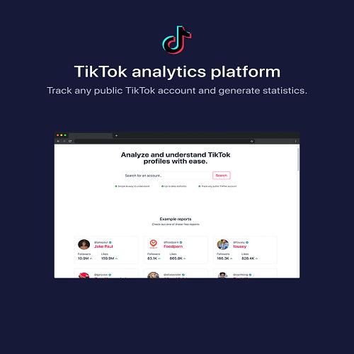 phpStatistics TikTok Analytics Platform SAAS Ready