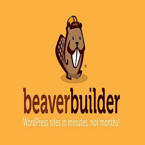 Beaver Builder Pro Plugin Activated