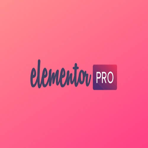Elementor Pro All Features Activated
