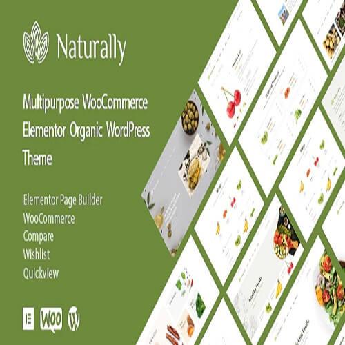 Organic Food Store Grocery Market WordPress Theme Naturally