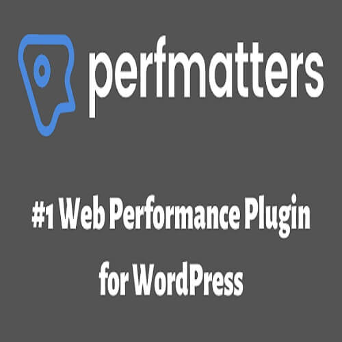 Perfmatters Plugin Latest Version